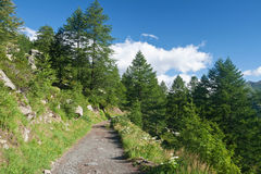 Alpine path in italy. Beautiful path in Italian Alps with mont Blanc on background Stock Images