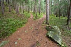 Alpine path Royalty Free Stock Photos