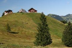Alpine Peak Stock Images