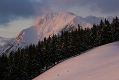 Alpine peak. On sunset in slovenian alps Royalty Free Stock Photos