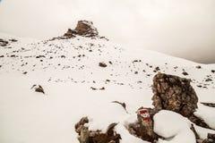 Alpine peak with snow Royalty Free Stock Photo