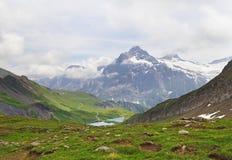 Alpine peaks landskape background. Bachalpsee lake, Grindelwald, Bernese highland. Alps, tourism, journey, hiking royalty free stock image