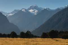 Alpine peaks in Westland National Park Royalty Free Stock Images