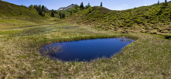 Alpine pond Stock Images