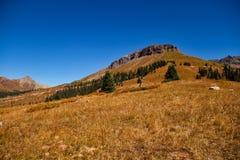 Alpine Prairie. A fall alpine prairie in the Rocky Mountains stock photo
