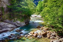 Alpine rill and mountaine forest in the National Park of Ordesa. Spanish National Park of Ordesa in the Pyrenees in a zone of rills and runlets between cliffs Stock Photo