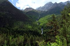 Alpine rill and mountaine forest in the National Park of Ordesa. Spanish National Park of Ordesa in the Pyrenees in a zone of rills and runlets between cliffs Royalty Free Stock Photography