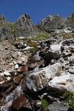 Alpine river Stock Photos