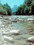 Alpine River. In summer 2016 Stock Photography