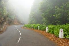 Alpine road in Madeira island Stock Photography