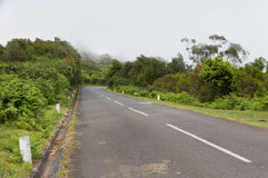 Alpine road in Madeira island Stock Image
