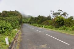 Alpine road in Madeira island Stock Image