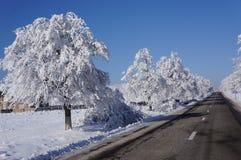 Alpine road in winter Stock Photo