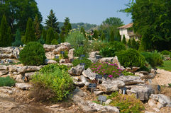 Alpine rock garden Royalty Free Stock Photo