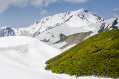 Alpine route in Japan Royalty Free Stock Images