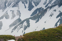 Alpine route in Japan Royalty Free Stock Photo