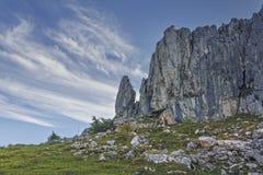 Alpine rumänische Landschaft Stockbild