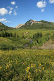 Alpine Scene. Rural image of alpine scene with river, cabin and wildflowers in early summer Stock Photo