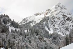 Alpine Scene, Austria Royalty Free Stock Photos