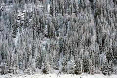 Alpine Scene, Northern Italy Stock Photos
