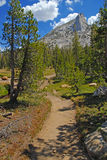 Alpine scene in Yosemite National Park, Sierra Nevada Mountains, California Royalty Free Stock Images