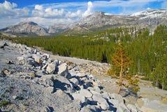 Alpine scene in Yosemite National Park, Sierra Nevada Mountains, California Royalty Free Stock Photos