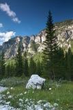 Alpine scenery Royalty Free Stock Photos
