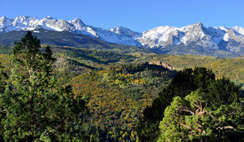 Alpine scenery of Colorado during foliage Stock Image