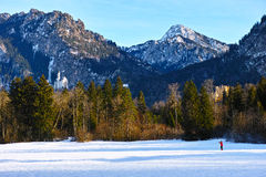 Alpine scenery at winter with castles Royalty Free Stock Images
