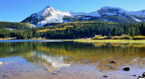 Alpine scenery of yellow and green aspen, snow covered mountains and reflection in the lake during foliage season Stock Images