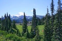 Alpine Schönheit Stockbilder