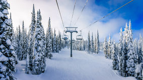 Alpine ski lift amidst snow covered trees and blue sky Stock Photo