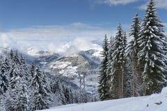 Alpine ski resort forest landscape Royalty Free Stock Photos