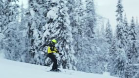 Alpine skier at arctic slope stock footage