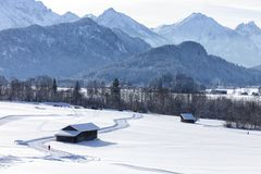 Alpine in the snow royalty free stock photos