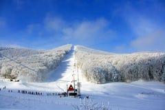 Alpine snow scene. Alpine snow center in a sunshine day Royalty Free Stock Photos