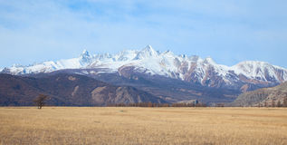 Alpine steppe Stock Photos
