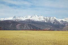 Alpine steppe Stock Image