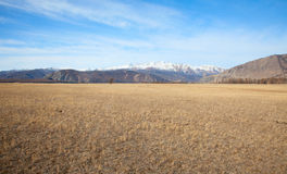 Alpine steppe Stock Photo