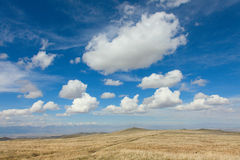 The alpine steppe in the mountains of central Asia Stock Photography