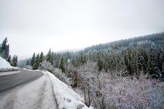 Alpine Straße Lizenzfreies Stockbild
