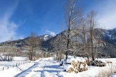 Alpine Straße in der Winterlandschaft Lizenzfreies Stockbild