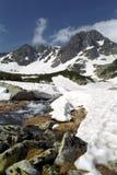 Alpine stream. Pietrele Valley - an alpine stream from National Park Retezat, Bucura II Peak on springtime Royalty Free Stock Image