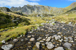 Alpine stream in the Atlantic Pyrenees, Bearn Royalty Free Stock Image