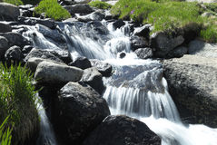 Alpine stream in Colorado Rocky Mountains Royalty Free Stock Photography