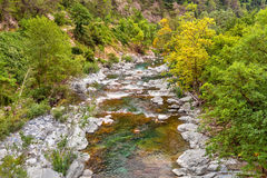 Alpine stream in France. Royalty Free Stock Images