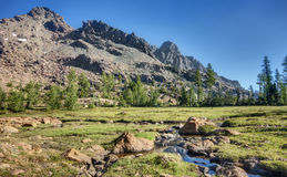 Alpine Stream and Meadow in Cascade Mountains. Mt. Ingalls Rises above an Alpine Stream and Meadow on a Sunny Summer Day Royalty Free Stock Image