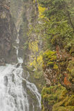 Alpine stream with a waterfall inside the forest, in Ahrntal - ITALY Stock Photography