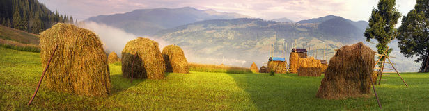 Alpine subsistence agriculture. Has old traditions of harvesting herbs for the winter, for natural milk in farms. Mow the grass and flowers, dried and folded in Royalty Free Stock Photos