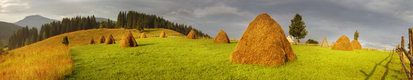 Alpine subsistence agriculture. Has old traditions of harvesting herbs for the winter, for natural milk in farms. Mow the grass and flowers, dried and folded in Royalty Free Stock Images